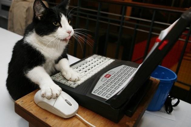 Быстро и качественно наберу текстНабор текста<br>Здравствуйте, уважаемые заказчики! Наберу текст в Microsoft Word (или любом другом текстовом редакторе по договорённости) со сканированных страниц, фотографий, PDF-файлов.Работу обязуюсь выполнить качественно и в срок, с исправлением грамматических и пунктуационных ошибок. Шрифт: Arial 12<br>
