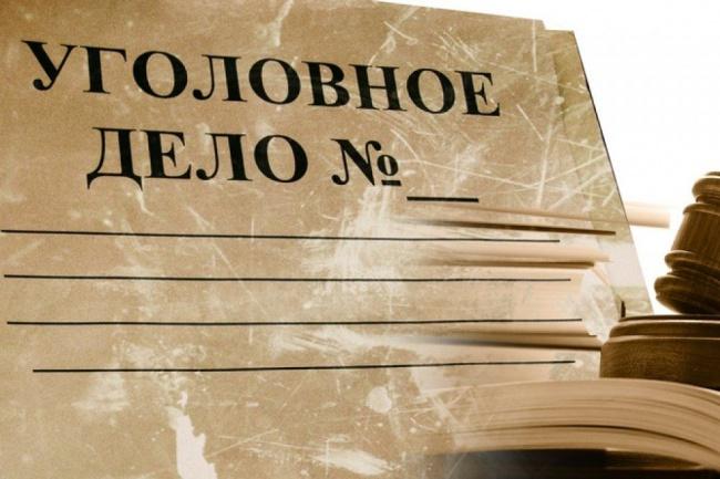 Обжалую приговор, постановление по уголовному или адм. делу 1 - kwork.ru