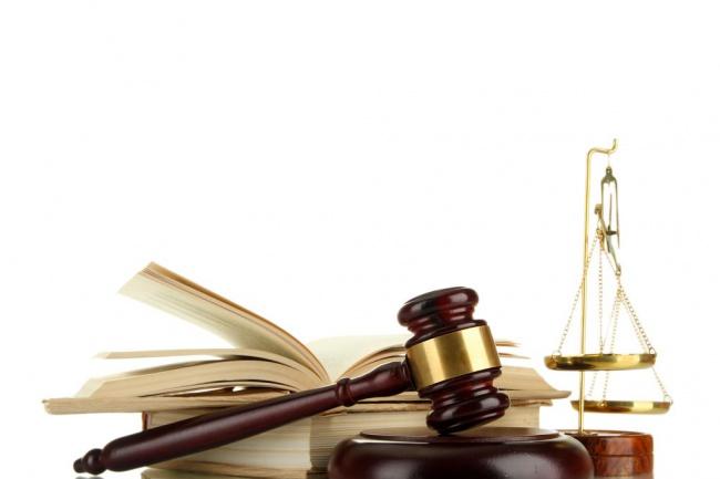договор, претензия, ответ на претензию, протокол разногласий и прочее 1 - kwork.ru