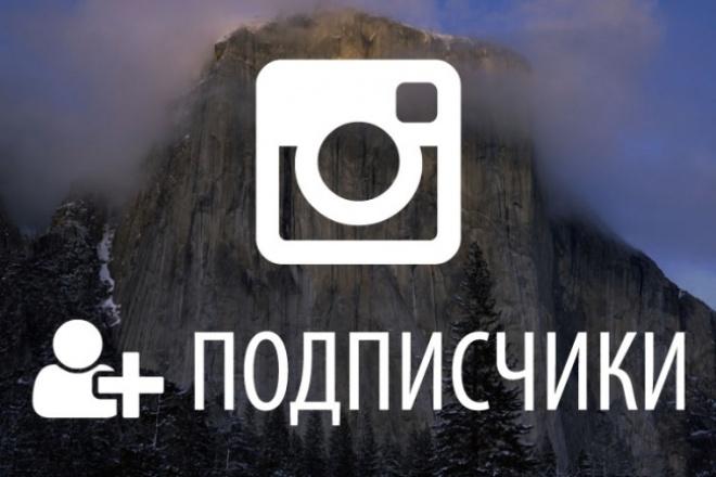 Приглашу 1000 подписчиков ( фолловеров)| followers в Инстаграм 1 - kwork.ru