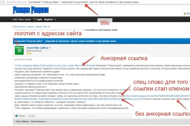 Ссылки со 125 форумов (с тиц) в тематических статьях + профили. 6,4 р. за форум 1 - kwork.ru