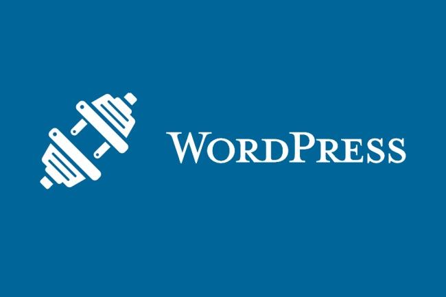 Решу любые проблемы с Wordpress 1 - kwork.ru
