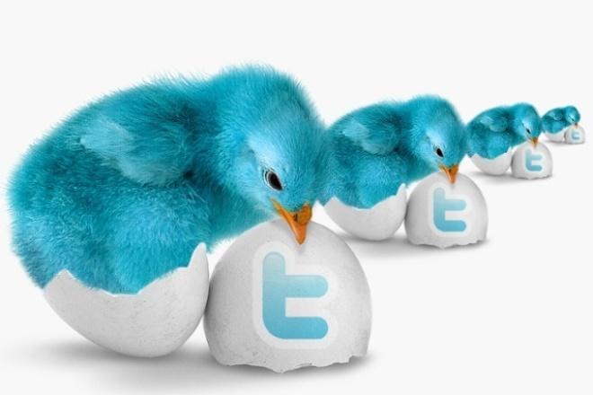 150 ретвитов Twitter. Реальные пользователи 1 - kwork.ru