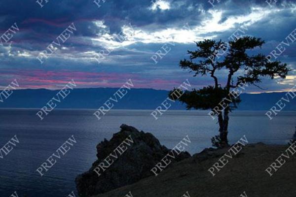 Наложение водяных знаков 1 - kwork.ru