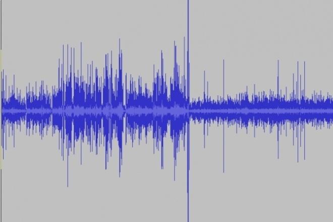 Расшифрую аудиозаписьНабор текста<br>По аудиофайлу с записью речи, диктофонной записи создам текстовую версию (расшифровку), которая поможет при цитировании, создании статей и просто будет меньше весить при хранении.<br>