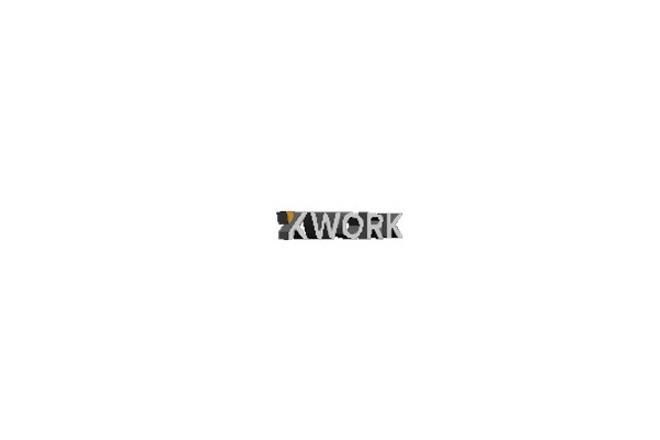 Создам анимацию вашего логотипа 1 - kwork.ru