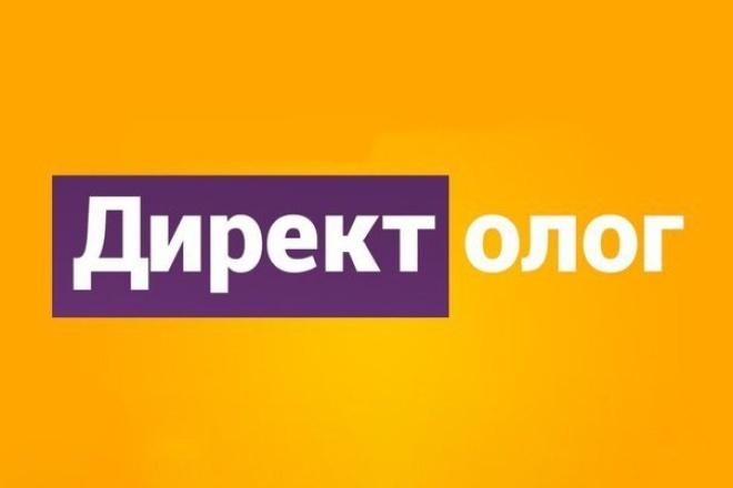 Приведу клиентов с Яндекс Директ РСЯ 1 - kwork.ru