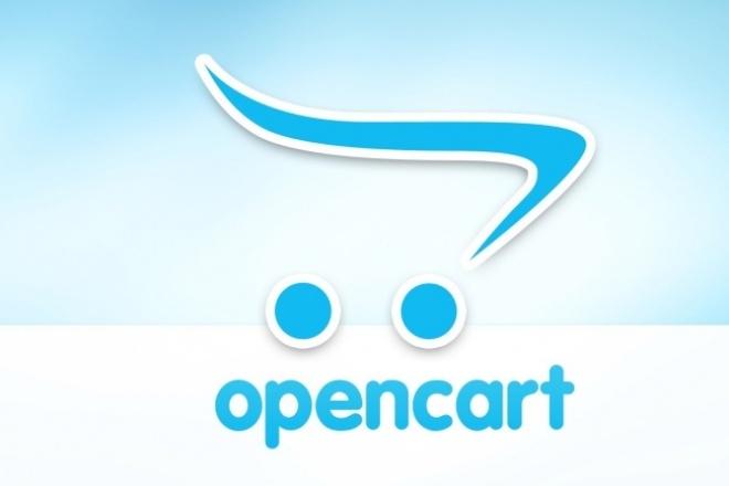 Помочь с opencart 1 - kwork.ru