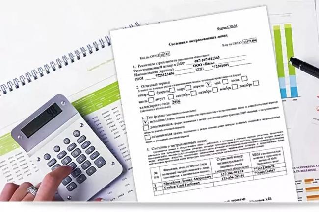 Составление СЗВ-М ежемесячный обязательный отчёт для всех ООО и ИП 1 - kwork.ru