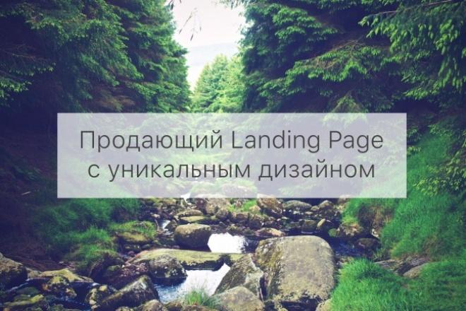 Сделаю для Вас продающий Landing Page в Adobe Muse 1 - kwork.ru