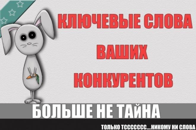 Достану ключевые слова ваших самых успешных конкурентов 1 - kwork.ru