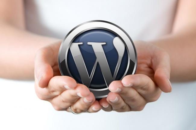 Сделаю правки на WordPress 1 - kwork.ru