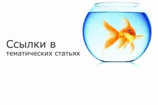 Продвижение страниц сайта 1 - kwork.ru