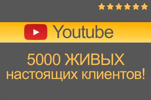 Приведу Трафик из официальной рекламы на youtube 1 - kwork.ru