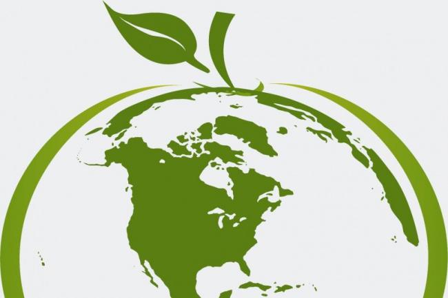 проведу skype консультацию по не налоговым сборам в сфере экологии 1 - kwork.ru