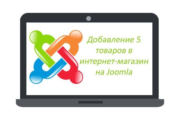 Добавлю 5 товаров (сложные карточки) в интернет-магазин на Joomla (VirtueMart)Наполнение контентом<br>Качественное добавление 5 товаров в интернет-магазин на Joomla включает заполнение следующих опций: 1. Название товара 2. Цена 3. Описание (копирайт до 1500 знаков) 4. Заполнение характеристик товара до 40 пунктов 5. 7-10 фото товара (без обработки, допускается кадрирование под нужный размер) либо 3-5 фото с ретушью. 6. Заполнение SEO данных (мета-данные, ЧПУ)<br>