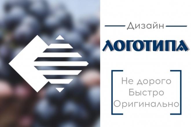 Дизайн логотипа для вашего бизнеса 1 - kwork.ru