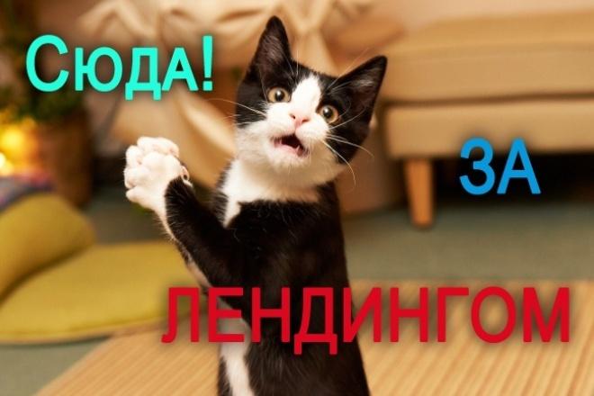 Лендинг высокого качества 1 - kwork.ru