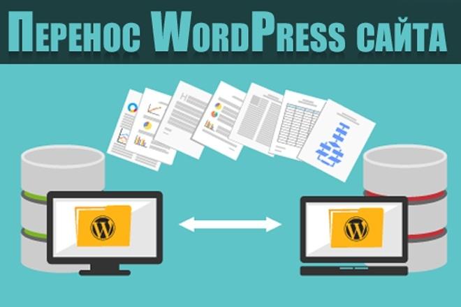 Качественный перенос WordPress сайта 1 - kwork.ru