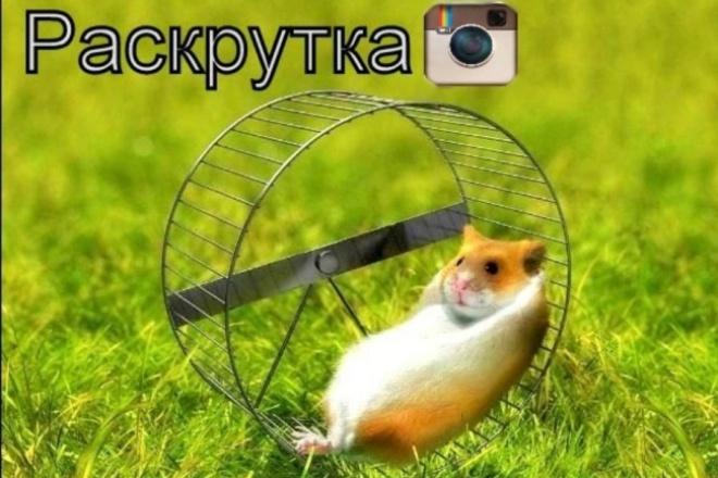 помогу в раскрутке инстаграмма 1 - kwork.ru