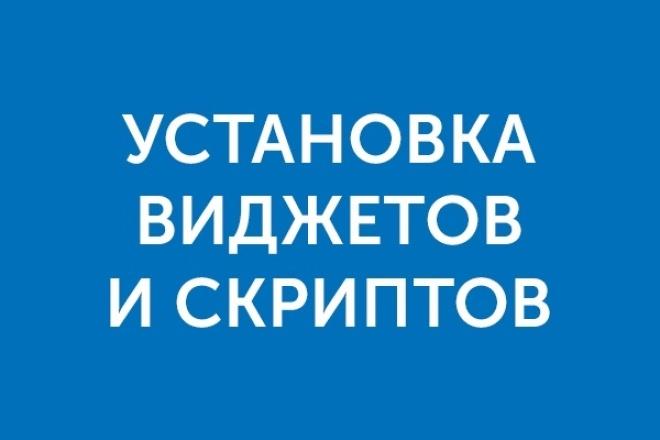 Установлю виджеты и скрипты на Ваш сайт - ВКонтакте, Facebook и др 1 - kwork.ru