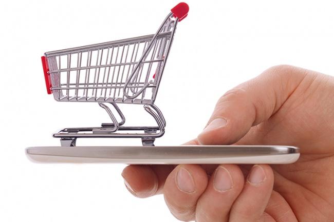 Автоматизирую импорт товаров в Opencart, обновление цен из csv, xml 1 - kwork.ru