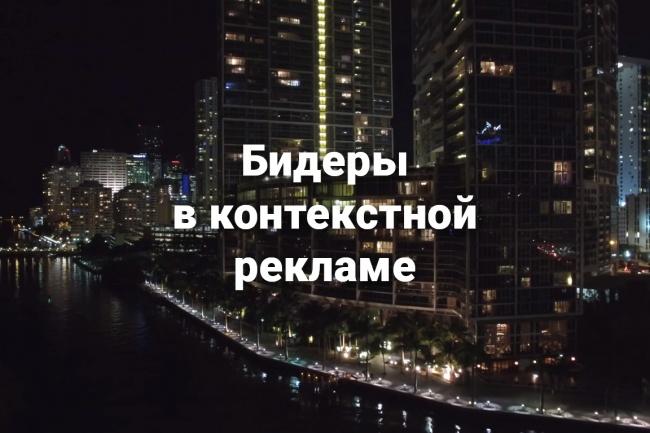Установлю Бид-менеджер для Яндекс Директ или Adwords 1 - kwork.ru
