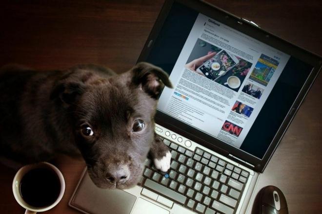 Контент для Instagram, Twitter, VK, сайта, блогаАдминистраторы и модераторы<br>Генерирую качественный контент для для вашего сайта, блога, профиля в социальной сети. Контент по теме именно вашего аккаунта. Постинг в оптимальное время. Один kwork составляет одно уникальное сообщение длиной до 280 символов с картинкой. При большем объёме снижение цены и хорошие бонусы.<br>