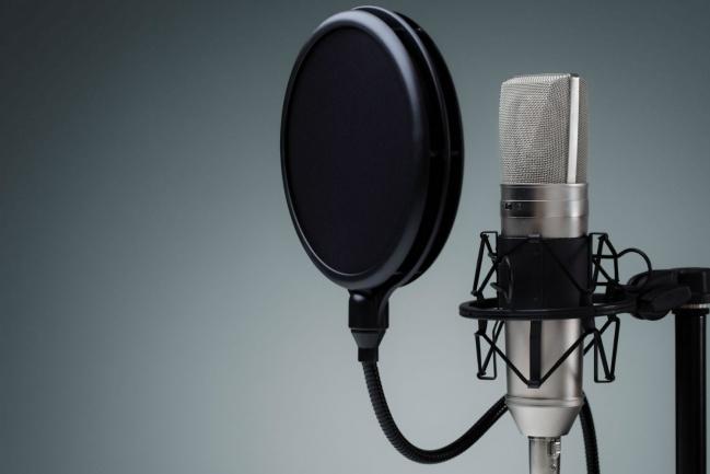 Озвучу аудиоприветствиеАудиозапись и озвучка<br>Озвучу аудиоприветствия, пример во вложении, большой опыт. Возможно наложение фоновой музыки. Готова к долгосрочному сотрудничеству.<br>