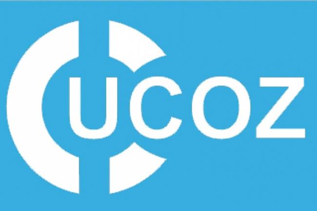 Расширенный аудит uCoz сайтов. Ссылки их качество, страницы, контент 1 - kwork.ru