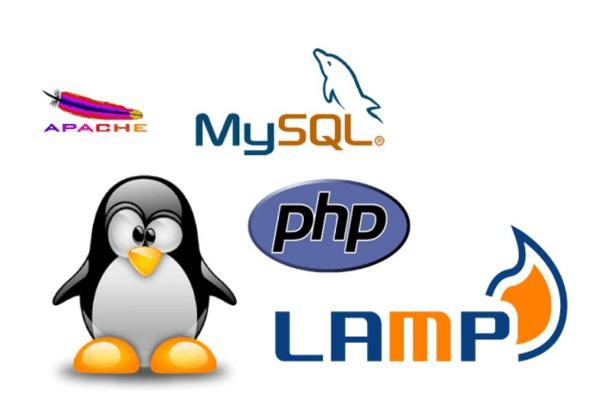 Настрою веб-серверАдминистрирование и настройка<br>Настрою под HighLoad, на максимум доступной железяки. Так же сделаю кэширование изображений. Прогоню через тестовою нагрузку.<br>