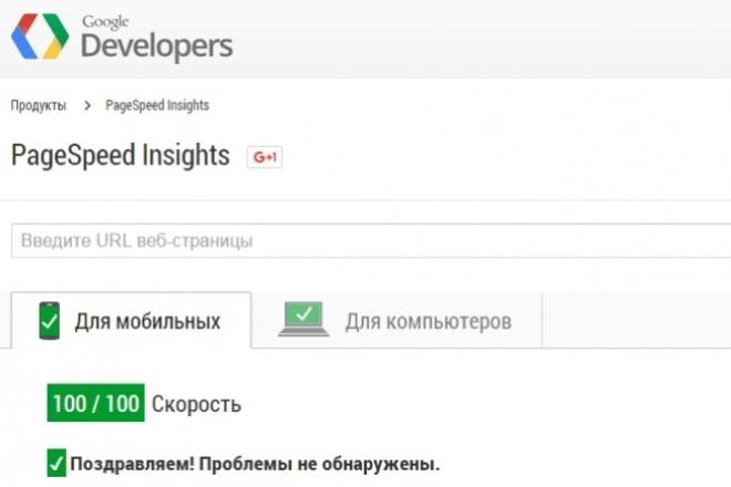 Увеличу показатели Google Pagespeed 1 - kwork.ru