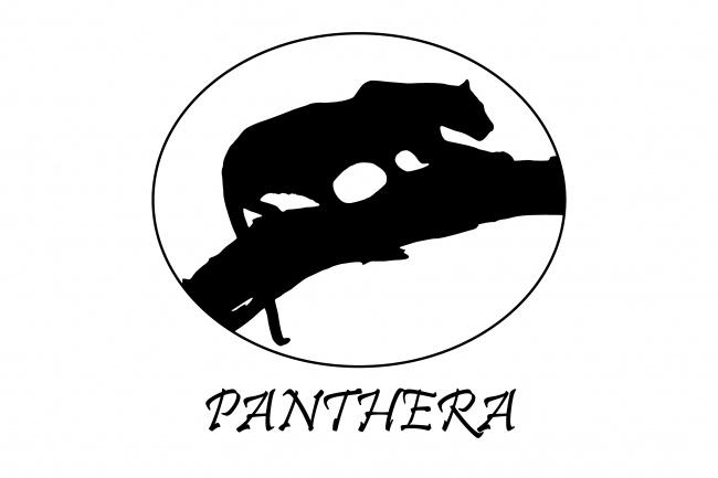 сделаю уникальный логотип в векторном формате 5 - kwork.ru