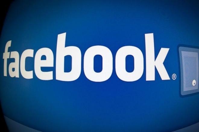 250 лайков на ФанГрупа Фейсбука 1 - kwork.ru