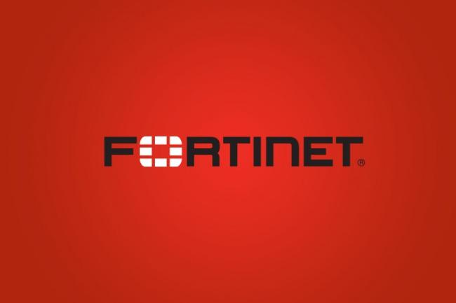 Настрою VPN на Fortigate / FortiWiFi 1 - kwork.ru
