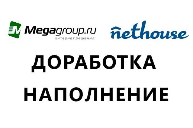 Любые работы с сайтами на платформах Мегагрупп и NetHouse 1 - kwork.ru