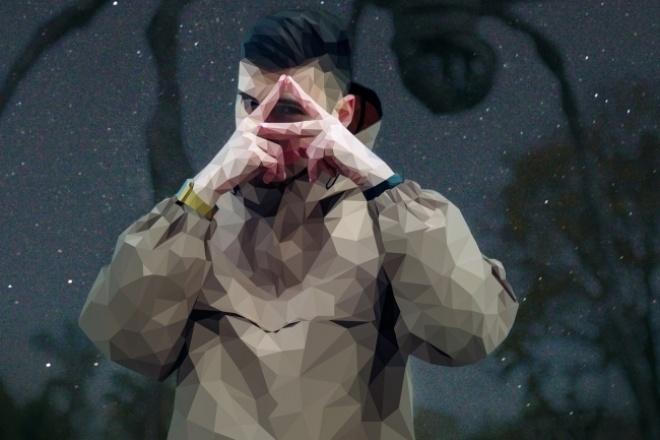 Обработаю ваше фото в стиле low-polygon 1 - kwork.ru