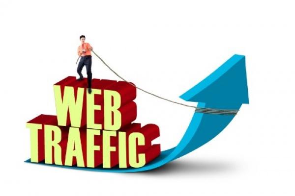 свыше 10000 посетителей на ваш сайт за месяц 1 - kwork.ru
