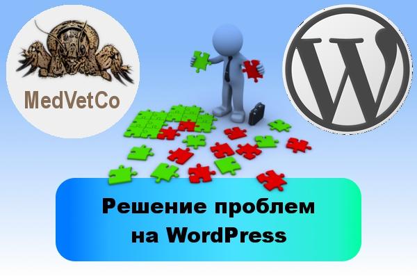 WordPress: решение проблемДоработка сайтов<br>В рамках данного кворка решу для Вас 1 проблему на сайте, сделанном на WordPress. Это может быть установка и настройка плагина, обновление, изменение служебных надписей, правки в вёрстке, оптимизация кода и многое другое. При решении 6 проблем и больше - работаю со скидкой. Пожалуйста, при заказе кворка предварительно свяжитесь со мной через личные сообщения, чтобы обсудить детали. Для решения сложных проблем, возможно, понадобится заказать несколько кворков. Обратите внимание, что у меня имеются кворки, созданные под решение определённых задач на WordPress. Возможно, Вам они более подойдут.<br>