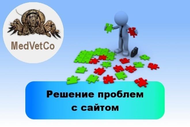 Решение проблем с сайтом 1 - kwork.ru