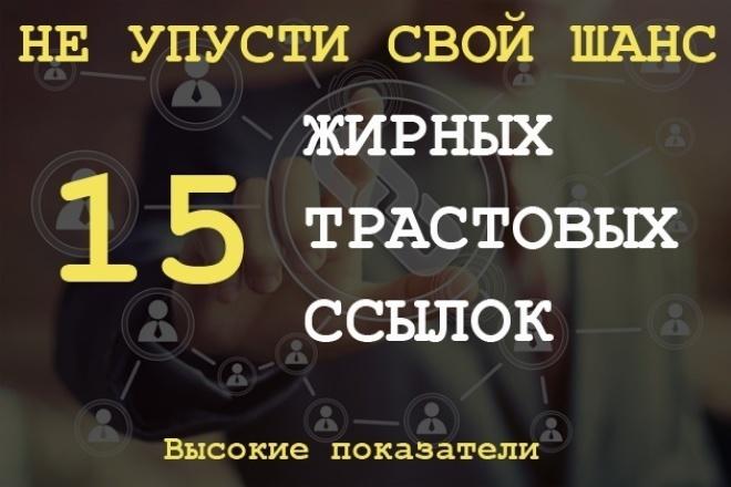 15 жирных вечных ссылок с трастовых сайтов с Высоким ТИЦ 1 - kwork.ru