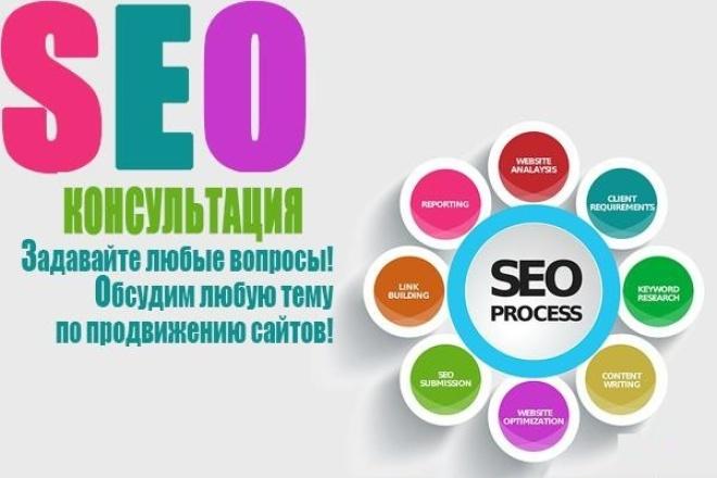 скайп консультация по SEO 1 - kwork.ru