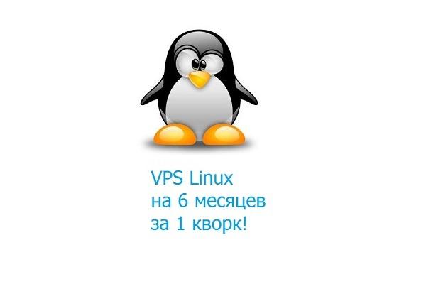 Виртуальный сервер Linux на 6 месяцев 1 - kwork.ru