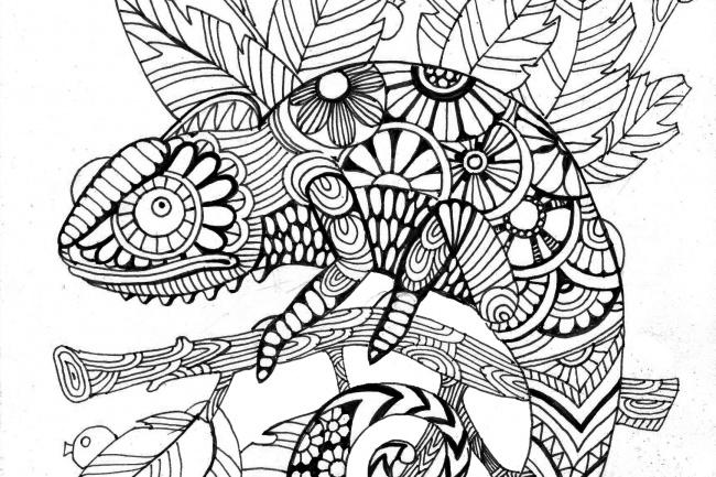 Нарисую антистресс-раскраску, иллюстрациюИллюстрации и рисунки<br>Я художник-график, работаю с книжной иллюстрацией, антистресс-раскрасками. Работаю с векторной обработкой)<br>