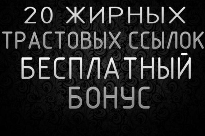 20 жирных вечных ссылок, установленные вручную на трастовые сайты 1 - kwork.ru