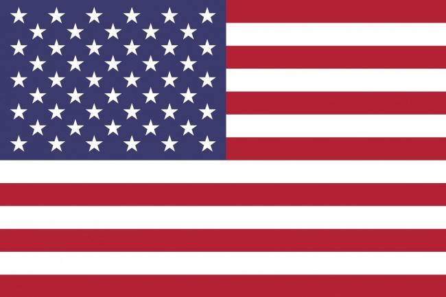 Консультация по вопросам получения статуса беженца в США 1 - kwork.ru