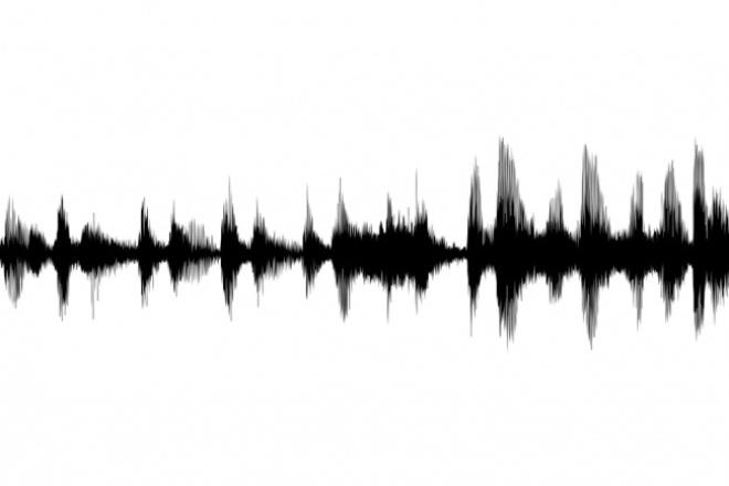 Транскрибация (перевод аудио в текст) 1 - kwork.ru
