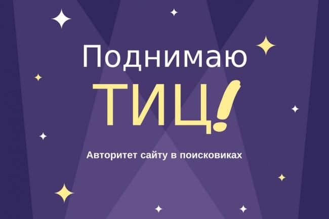 Подниму авторитет и ТИЦ вашего сайта 1 - kwork.ru