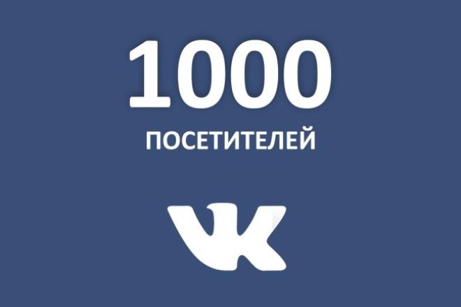 1000 посетителей из VK 1 - kwork.ru