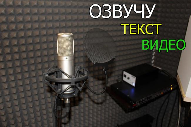 Озвучу небольшой текст или видеоролик 1 - kwork.ru